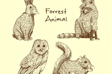 4款逼真手绘动物矢量w88优德
