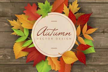 彩色秋季叶子装饰标签矢量优发娱乐