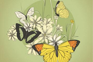 复古蝴蝶和花卉矢量素材
