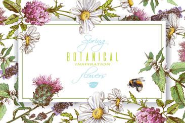 彩绘春季花卉和蜜蜂框架矢量素材