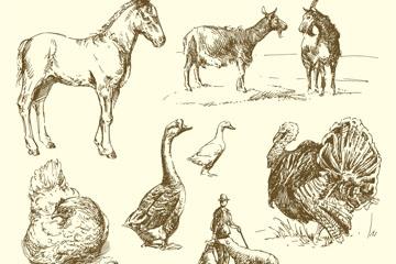 10款手绘农场动物矢量素材