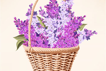 装满紫丁香的花篮矢量素材