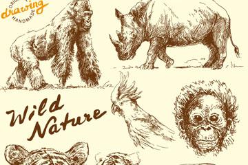 8款手绘野生动物设计矢量素材