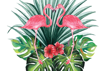 2只粉色火烈鸟和扶桑花矢量图