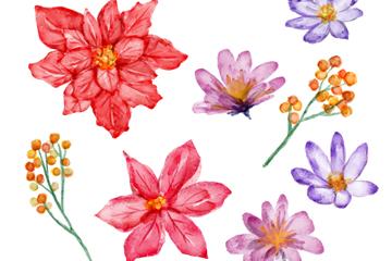 8款水彩绘冬季花朵矢量素材