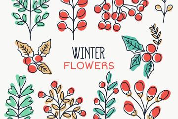 10款彩绘冬季植物矢量图
