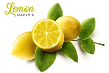新鲜带叶柠檬设计图矢量素材
