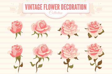 12款复古粉色玫瑰矢量素材
