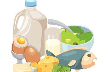 8个卡通健康食物组合矢量图