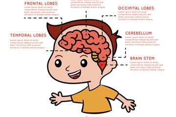 创意男孩大脑运作信息图矢量素材