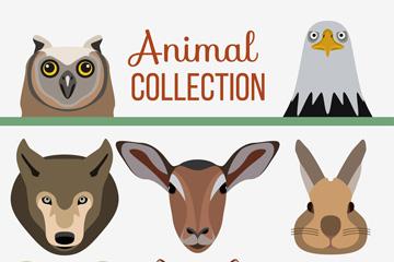 8款创意野生动物头像矢量素材