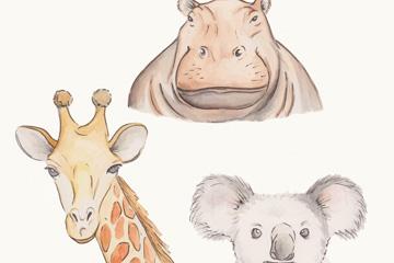 3款彩绘野生动物头像矢量素材
