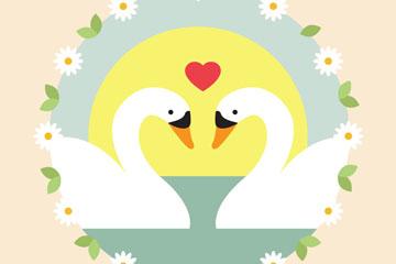 美丽白天鹅情侣矢量素材