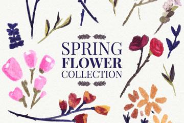 15款彩绘春季花卉矢量素材