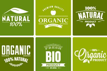 9款绿色天然有机产品标签矢量图