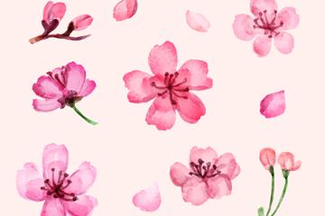 11款粉色樱花矢量素材