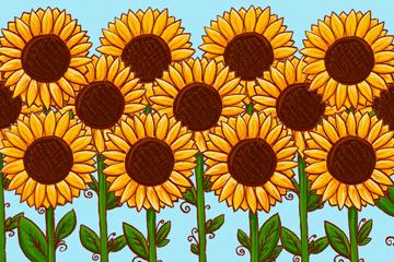 彩绘春季向日葵花丛矢量图