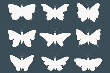 9款白色蝴蝶剪影矢量素材