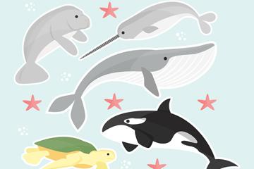 5款创意海洋动物矢量素材