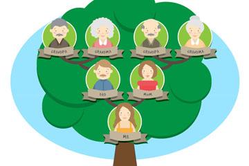 扁平化绿色家族树矢量素材