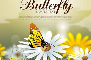 美丽雏菊花丛采蜜的蝴蝶矢量图