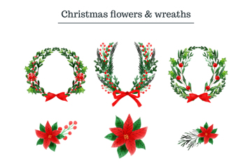 12款彩绘圣诞花卉和花环矢量素材