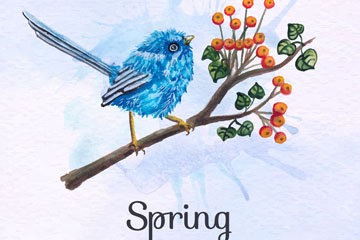 彩绘春季花枝上的蓝色鸟矢量素材