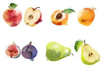 14�N水彩水果PSD素材