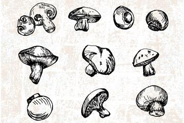 16款手绘蘑菇设计乐虎国际线上娱乐乐虎国际