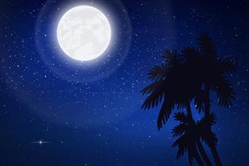 创意夜晚沙滩风景矢量素材