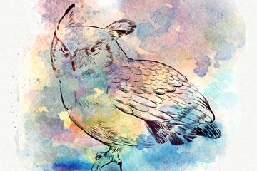 水彩绘背景猫头鹰矢量素材