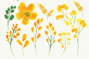 9款水彩绘黄色花卉和叶子矢量图