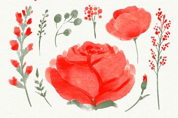 12款水彩绘红色玫瑰花卉和树叶矢