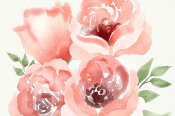 水彩绘4朵粉色玫瑰花矢量优发娱乐