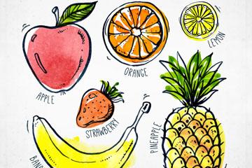 6款手绘彩色水果矢量w88优德