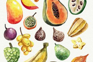 18款水彩绘水果矢量优发娱乐