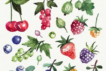 17款水彩绘新鲜水果矢量w88优德