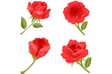 4款美丽红色玫瑰花矢量素材