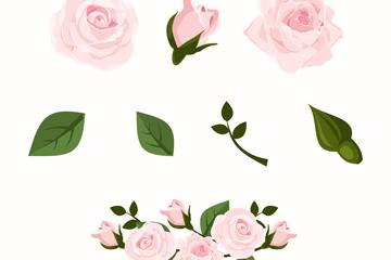 4款粉色玫瑰花和4款叶子矢量图