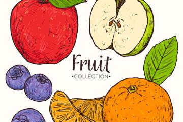 4款手绘彩色水果矢量素材