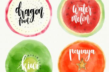 4款水彩绘水果切面矢量素材