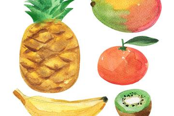 5款水彩绘水果矢量素材