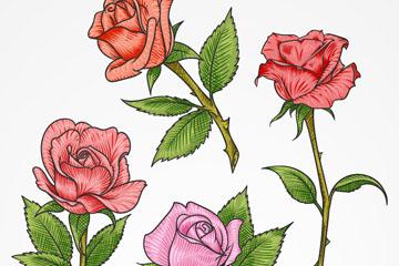 4款彩色单枝玫瑰花矢量素材
