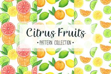 3款彩色柑橘类水果无缝背景矢量图