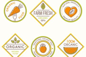 6款彩色有机食品标签矢量图