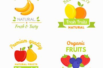 4款彩色新鲜水果标签矢量图
