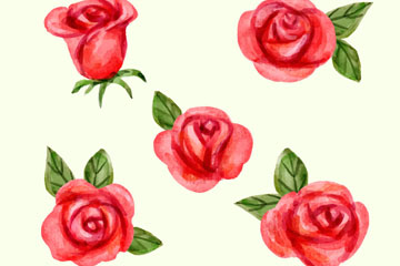 5款水彩绘红玫瑰矢量素材