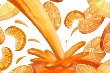 美味橙子和橙汁矢量素材