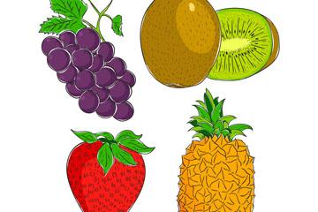 4款彩色手绘水果矢量素材