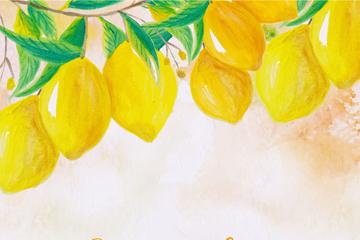 水彩绘树上的黄色柠檬矢量素材